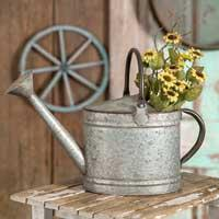 Oval Watering Pitcher