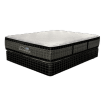 Triumph All Seasons Plus Pillow Top