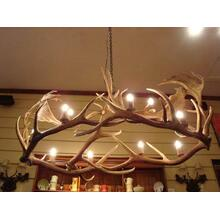REAL 10 Light Elk/Fallow Oval Antler Chandelier