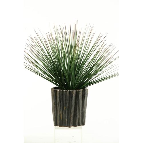 Onion Grass in Ceramic Vase