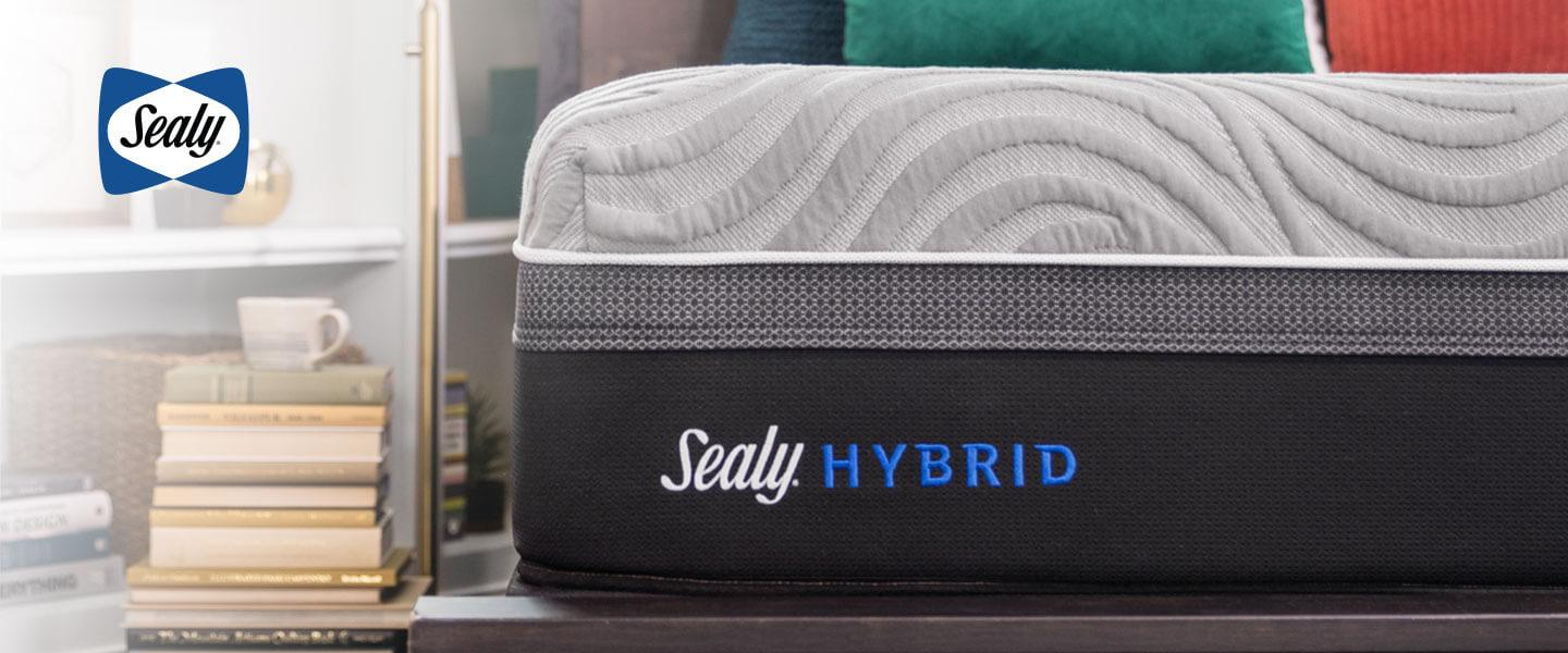 Sealy - Shop Now