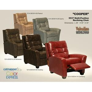 Catnapper - Multi-Position Reclining Chair