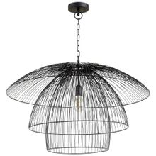 See Details - Canopy Pendant