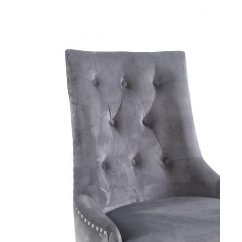 Modrest Dumas - Contemporary Grey Velvet & Stainless Steel Dining Chair (Set of 2)