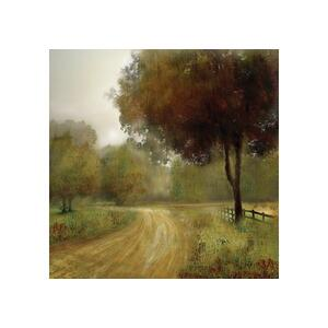 Country Road By Nan