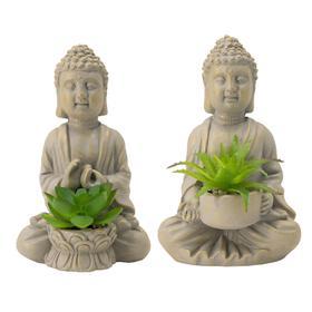 S/2 Buddha Succulent