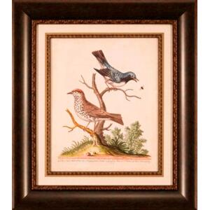 Edward Bird Pairs V