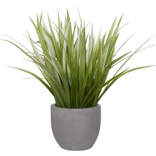 Uttermost - Dracaena Planter