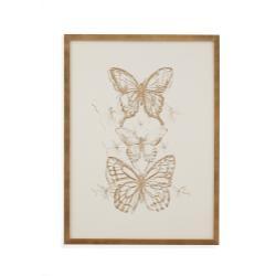 Butterfly Sketch II