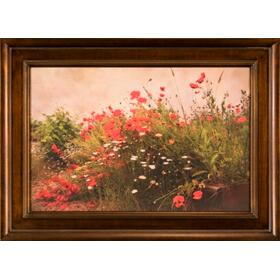Poppy Garden- 24x36- Print
