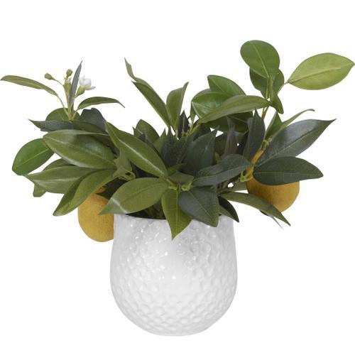 Uttermost - Positano Lemon Accent
