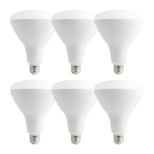 purePower BR40 LED Bulb - 6 pack