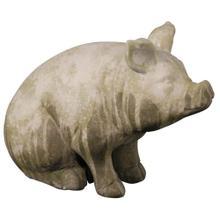 See Details - Pig