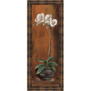 """Orchid Il"" Framed Print Wall Art"