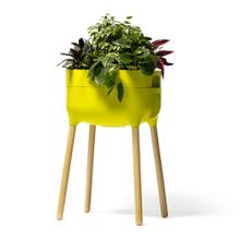 Urbalive Tall Self Watering Planter w/ FSC hardwood legs