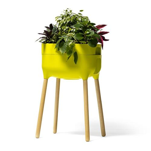 Urbalive Tall Self Watering Planter w/ FSC hardwood legs