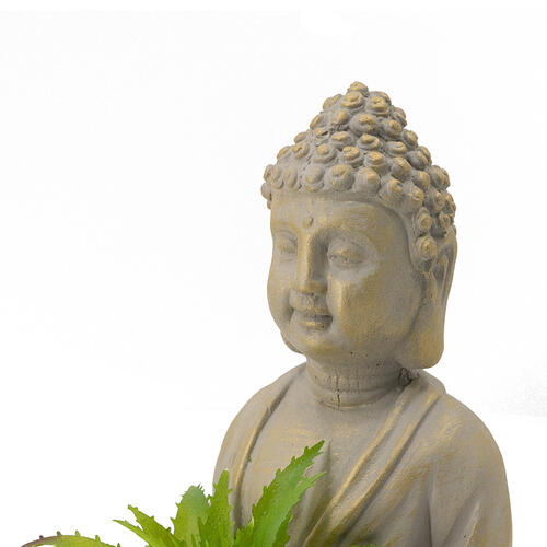 A & B Home - S/2 Buddha Succulent