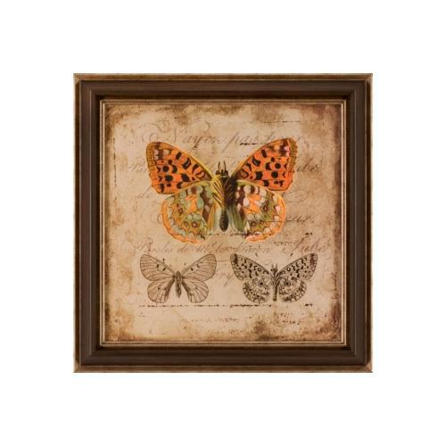 The Ashton Company - The Naturalist II