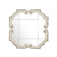 See Details - Troncon Mirror