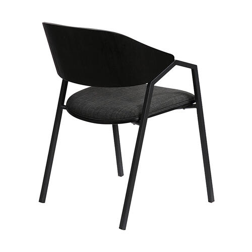 Austin Charcoal Modern Dining Accent Chairs - Set of 2