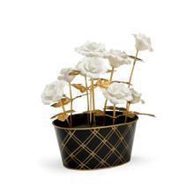 Rose Arrangement - White