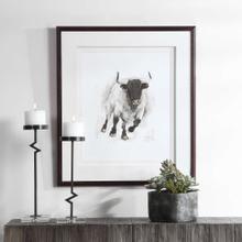Rustic Bull Framed Print