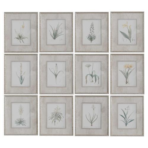Spring Florals Framed Prints, S/12