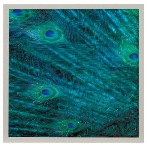 Style Craft - Peacock Galaxy II  Made in USA  Artist Print  Faux Wood Frame Under Glass  Attached Hanging Hard