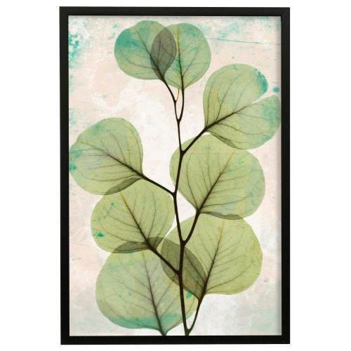 Style Craft - Eucalyptus Stoned II  Made in USA  Artist Print  Faux Wood Frame Under Glass  Attached Hanging H