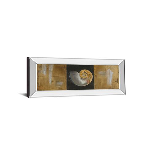 """Seashells Il"" By Patricia Pinto Mirror Framed Print Wall Art"