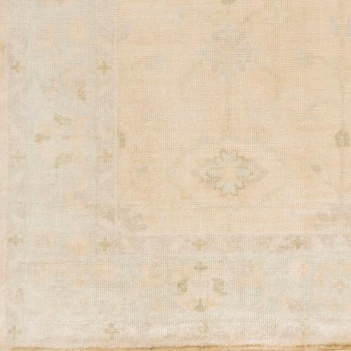 Surya - Antique ATQ-1011 2' x 3'