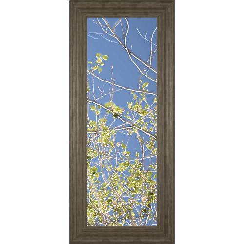 "Classy Art - ""Spring Poplars IV"" By Sharon Chandler Framed Print Wall Art"