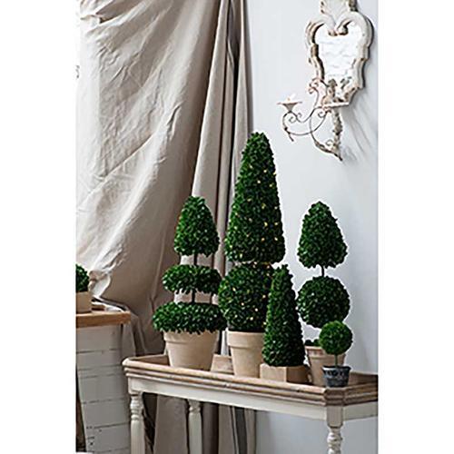Topiary Tree L