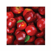 Red Apples Fine Wall Art