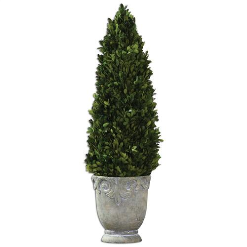 Preserved Boxwood Cone Topiary