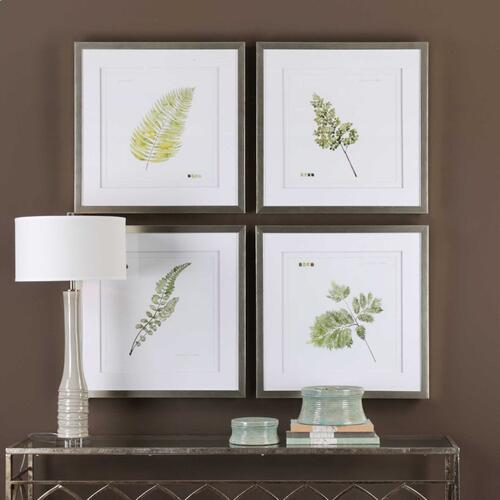 Watercolor Leaf Study Framed Prints, S/4