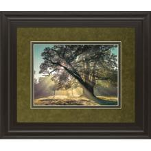 """Breaking Through"" By A. Frank Framed Print Wall Art"