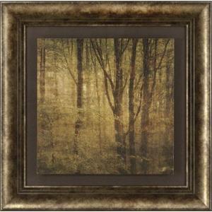 Fog In Mountain Trees #2