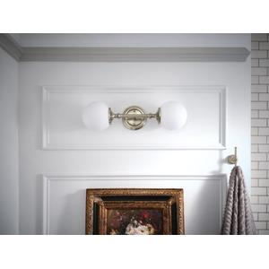 Colinet brushed nickel double robe hook