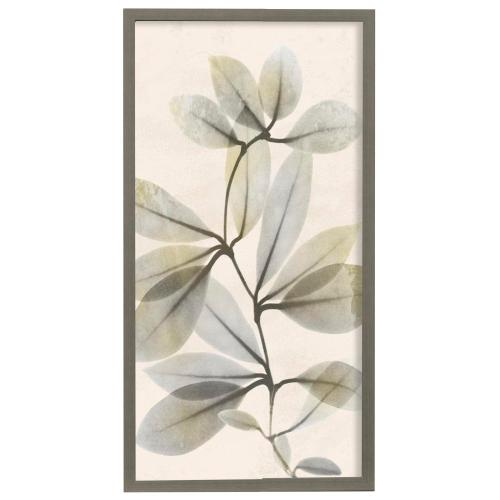 Style Craft - Sunkissed Growth III  22in X 42in Promotional Framed Print Under Glass  Ready to Hang