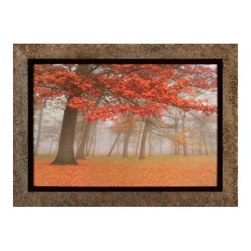 The Ashton Company - Autumn Mist I