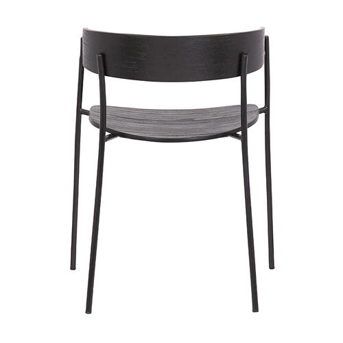 Perry Black Wood and Metal Modern Dining Room Chairs Set of 2