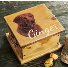 Golden Retriever Sporting Dog Product Image