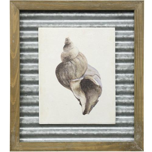 Style Craft - WATERCOLOR SEASHELL II  16in X 14in  Made in the USA  Textured Framed Print