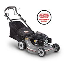 DR Self-Propelled Lawn Mower with Manual Start
