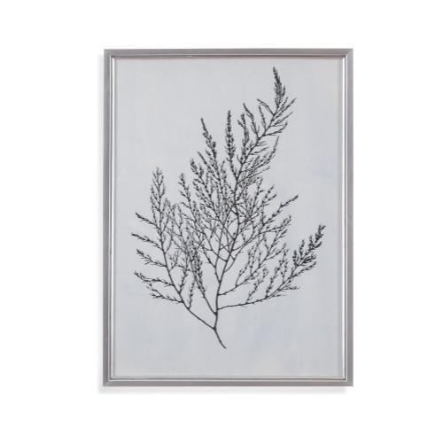 Silver Foil Algae II