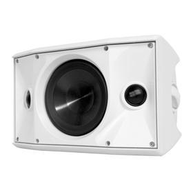 OE6DT White, Indoor/Outdoor Speaker