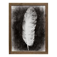 Inverted Feather VI