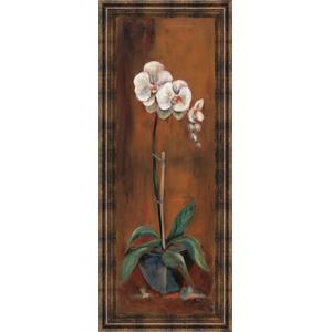 """""""Orchid I"""" Framed Print Wall Art"""