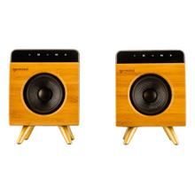 Portable Bluetooth Speaker Pair